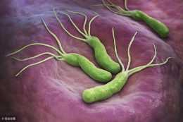 """幽門螺旋桿菌這5個""""傳染""""途徑,需警惕,瞭解後最好避開"""
