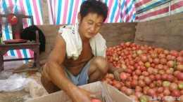 農村人種畝產上萬斤的作物,捨得用貴肥料,每斤能多賣0.2元
