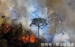 二氧化碳排放量超吸收量3倍:亞馬遜雨林已經徹底毀了