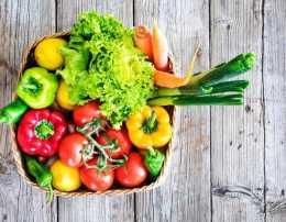 維生素C與健康