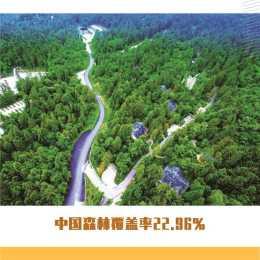 中國森林覆蓋率22.96%