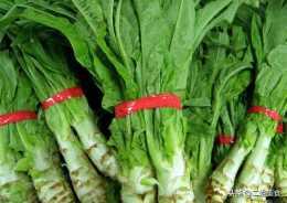 小滿過後,5種有蟲子也可以吃的蔬菜,無農藥殘留,吃著安全健康