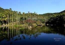 三亞呀諾達 熱帶雨林洗肺之旅